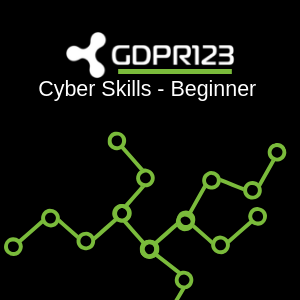 Cyber Skills - Beginner Training Logo