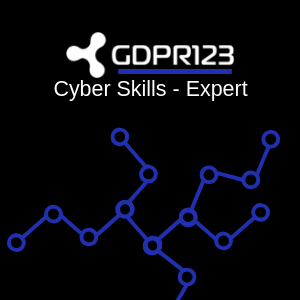 Cyber Skills Expert Training Logo