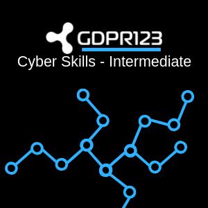 Cyber Skills Intermediate Training Logo